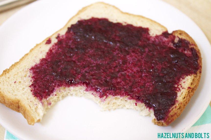 Homemade Blueberry Jam 1