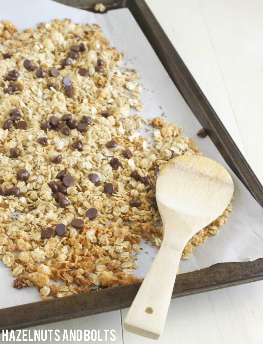 chocolate coconut chia granola 3